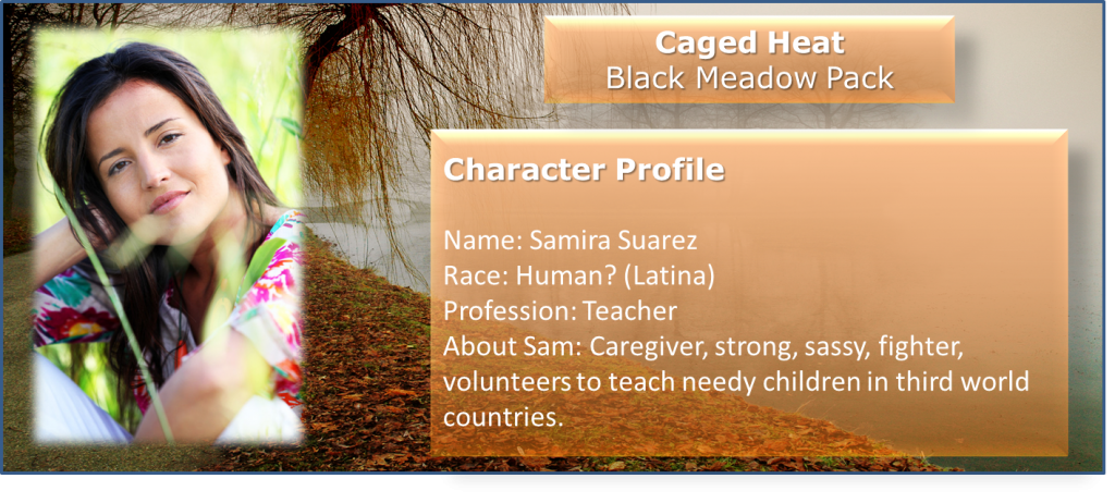 Character Profile Sam